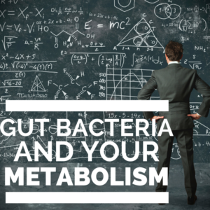 The Main Ways Gut Bacteria Interfere with Your Metabolism