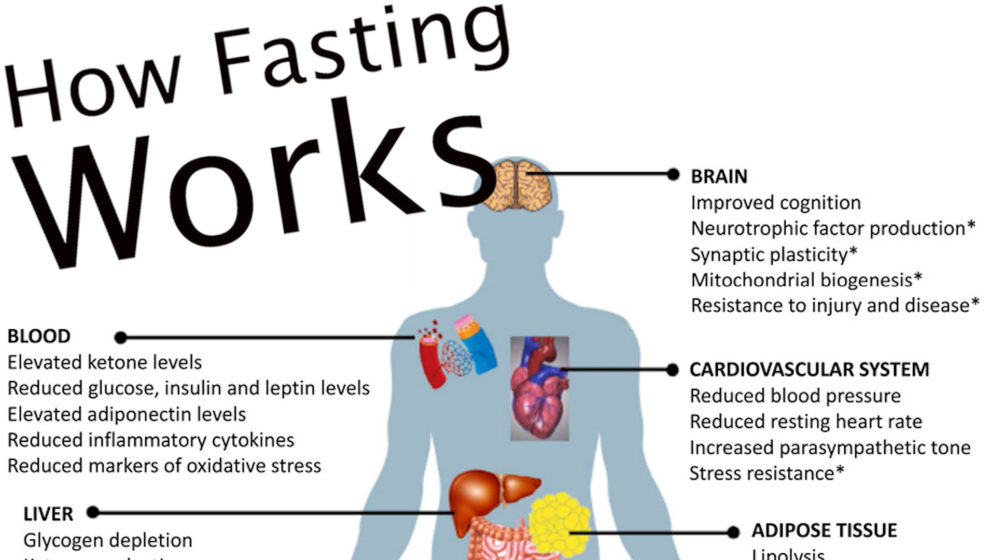 How Fasting Works & Tips for Success