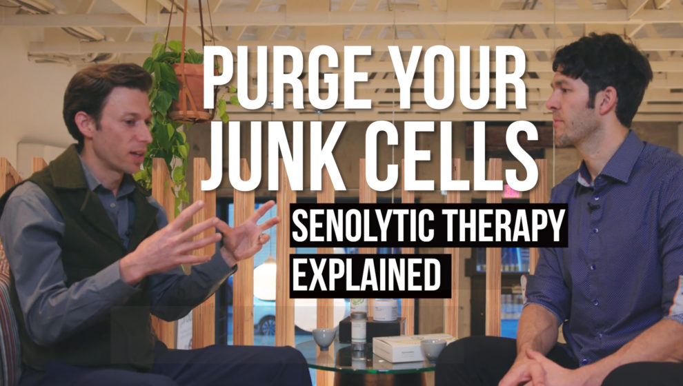 Senolytic Therapy cellular senescence Jeff Grim